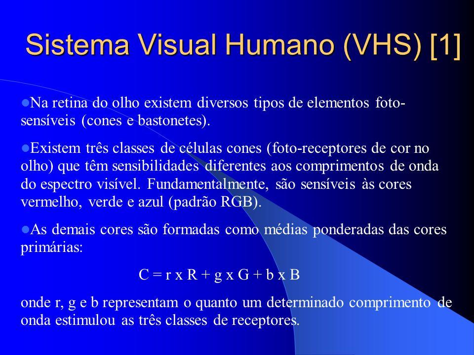 Sistema Visual Humano (VHS) [1]